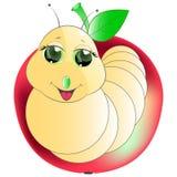 σκουλήκι μήλων Στοκ Φωτογραφία
