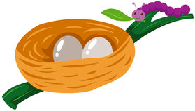 σκουλήκι φωλιών αυγών Στοκ φωτογραφία με δικαίωμα ελεύθερης χρήσης