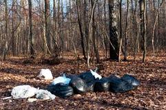 Σκουπίδια στο δάσος Στοκ Φωτογραφία