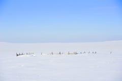 Σκουπισμένη φραγή χιονιού Στοκ Φωτογραφία