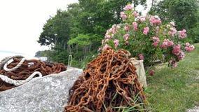Σκουριασμένα αλυσίδα και λουλούδια στη μαρίνα στοκ εικόνες