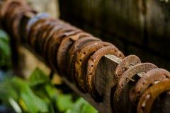 Σκουριασμένα πέταλα Στοκ φωτογραφίες με δικαίωμα ελεύθερης χρήσης