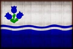 Σκουριασμένη απεικόνιση σημαιών Drapeau du λάκκα-Άγιος-Jean διανυσματική απεικόνιση