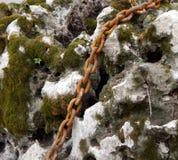 Σκουριασμένη αλυσίδα σε μια πέτρα θάλασσας με τις τρύπες και το βρύο Στοκ Φωτογραφία