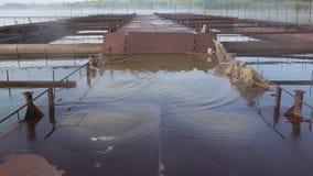 Σκουριασμένη πλατφόρμα μετάλλων που πλημμυρίζουν στο νερό στο αγρόκτημα ψαριών ομιχλώδες πρωί λιμνών απόθεμα βίντεο