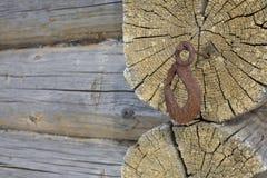 Σκουριασμένος γάντζος Στοκ Φωτογραφία