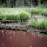 Σκουριασμένος ποταμός Στοκ φωτογραφία με δικαίωμα ελεύθερης χρήσης