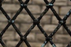 Σκουριασμένος φράκτης συνδέσεων αλυσίδων στο γκρίζο υπόβαθρο, την γκρίζα και μαύρη αφηρημένη κινηματογράφηση σε πρώτο πλάνο ενός  Στοκ φωτογραφία με δικαίωμα ελεύθερης χρήσης