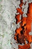 Σκουριασμένος Στοκ φωτογραφίες με δικαίωμα ελεύθερης χρήσης