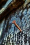 Σκουριασμένο καρφί Στοκ Φωτογραφία