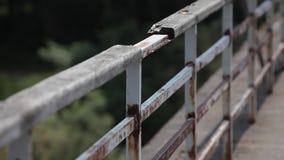 Σκουριασμένο κιγκλίδωμα της παλαιάς θερινής ημέρας γεφυρών φιλμ μικρού μήκους