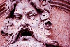 Σκουριασμένο πρόσωπο Στοκ Φωτογραφίες