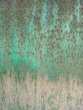σκουριασμένο φύλλο Στοκ εικόνα με δικαίωμα ελεύθερης χρήσης
