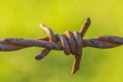 Σκουριασμένο barbwire στοκ φωτογραφία