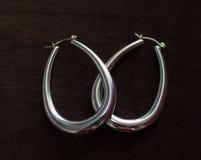 Σκουλαρίκια Στοκ Εικόνες