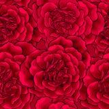 Σκούρο κόκκινο καρδιά τριαντάφυλλων άνευ ραφής Στοκ Φωτογραφίες
