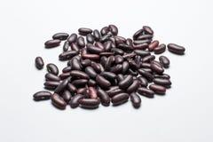 Σκούρο κόκκινο φασόλια νεφρών που απομονώνονται Στοκ εικόνα με δικαίωμα ελεύθερης χρήσης