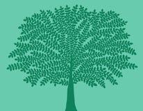 Σκούρο πράσινο σκιαγραφία ενός δέντρου σε ένα ανοικτό πράσινο υπόβαθρο διανυσματική απεικόνιση