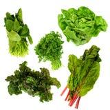 σκούρο πράσινο φυλλώδη λαχανικά Στοκ Φωτογραφία