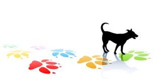 σκυλάκι Στοκ φωτογραφία με δικαίωμα ελεύθερης χρήσης