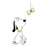 σκυλί αστείο Στοκ Εικόνες