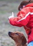 σκυλί αυτή κύριος υπάκο&upsilo Στοκ φωτογραφία με δικαίωμα ελεύθερης χρήσης