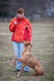 σκυλί αυτή κύριος υπάκο&upsilo στοκ φωτογραφία