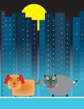 σκυλί γατών αστικό Στοκ εικόνα με δικαίωμα ελεύθερης χρήσης