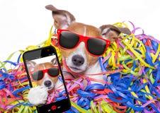 Σκυλί εορτασμού κόμματος Στοκ Εικόνες