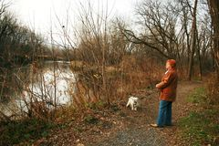 σκυλί η περπατώντας γυναί&ka στοκ εικόνες με δικαίωμα ελεύθερης χρήσης