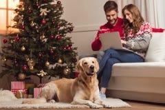 Σκυλί και ζεύγος που χρησιμοποιούν το lap-top Στοκ φωτογραφία με δικαίωμα ελεύθερης χρήσης