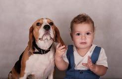 Σκυλί και μικρό παιδί λαγωνικών Στοκ εικόνες με δικαίωμα ελεύθερης χρήσης
