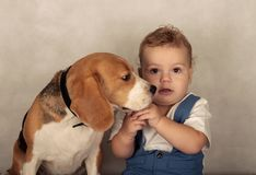 Σκυλί και μικρό παιδί λαγωνικών Στοκ φωτογραφία με δικαίωμα ελεύθερης χρήσης