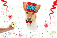 σκυλί καλή χρονιά Στοκ φωτογραφία με δικαίωμα ελεύθερης χρήσης