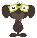 σκυλί λίγα nerdy Στοκ Εικόνες