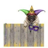Σκυλί μαλαγμένου πηλού καρναβαλιού gras της Mardi με jester harlequin το καπέλο και ενετική ένωση μασκών στον ξύλινο φράκτη Στοκ Φωτογραφία