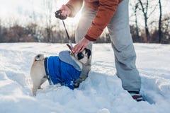 Σκυλί μαλαγμένου πηλού που περπατά στο χιόνι με τον κύριό του Κουτάβι που φορά το χειμερινό παλτό στοκ εικόνες