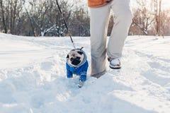 Σκυλί μαλαγμένου πηλού που περπατά στο χιόνι με τον κύριό του Κουτάβι που φορά το χειμερινό παλτό στοκ φωτογραφία με δικαίωμα ελεύθερης χρήσης