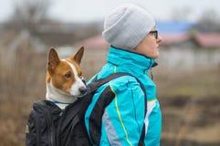 Σκυλί που έχει το συμπαθητικό πεζοπορώ όταν το φέρνει ο χαριτωμένος αχθοφόρος του μέσα στο άνετο σακίδιο πλάτης στοκ φωτογραφία με δικαίωμα ελεύθερης χρήσης