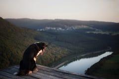 Σκυλί στο ηλιοβασίλεμα στη φύση Pet σε μια ξύλινη γέφυρα υπάκουος αυστραλιανός ποιμένας στοκ φωτογραφίες