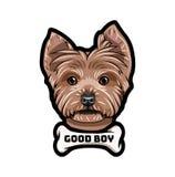 Σκυλί τεριέ του Γιορκσάιρ αποστεωμένη Καλή επιγραφή αγοριών Φυλή σκυλιών διάνυσμα ελεύθερη απεικόνιση δικαιώματος
