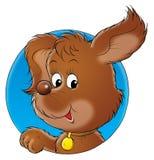 σκυλί 001 μου Στοκ εικόνα με δικαίωμα ελεύθερης χρήσης