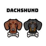 Σκυλί Dachshunds αποστεωμένη Καλή επιγραφή αγοριών Φυλή σκυλιών διάνυσμα απεικόνιση αποθεμάτων