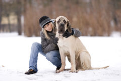 σκυλί gil Στοκ Εικόνες