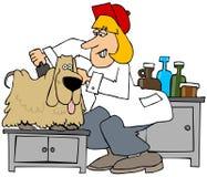 Σκυλί groomer που βουρτσίζει έξω ένα pooch απεικόνιση αποθεμάτων