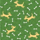 σκυλιά κόκκαλων τυχερά Στοκ φωτογραφία με δικαίωμα ελεύθερης χρήσης