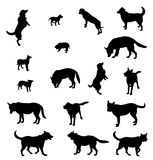 σκυλιά περιγραμμάτων Στοκ Εικόνες
