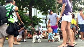 Σκυλιά στο κόμμα Ρίο οδών Blocao καρναβάλι απόθεμα βίντεο