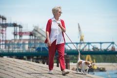 σκυλί η ανώτερη γυναίκα τη& Στοκ Εικόνα