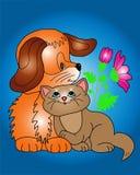 Σκυλί και γάτα Στοκ Εικόνες